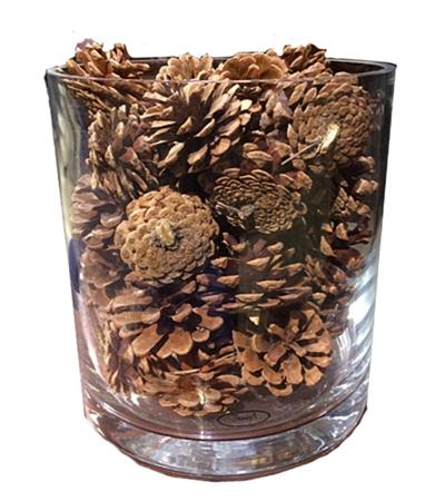 pinecones-glassware