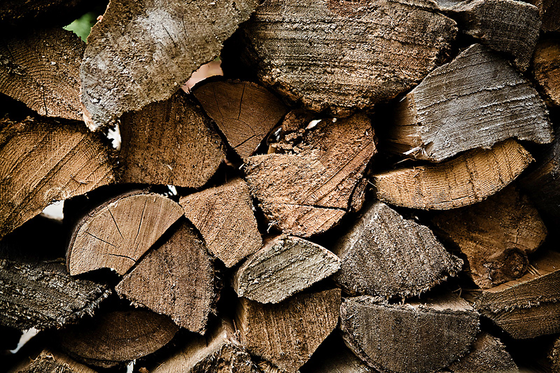 5 Reasons Get Firewood in Spring