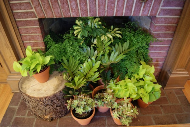 greenery in the fireplace