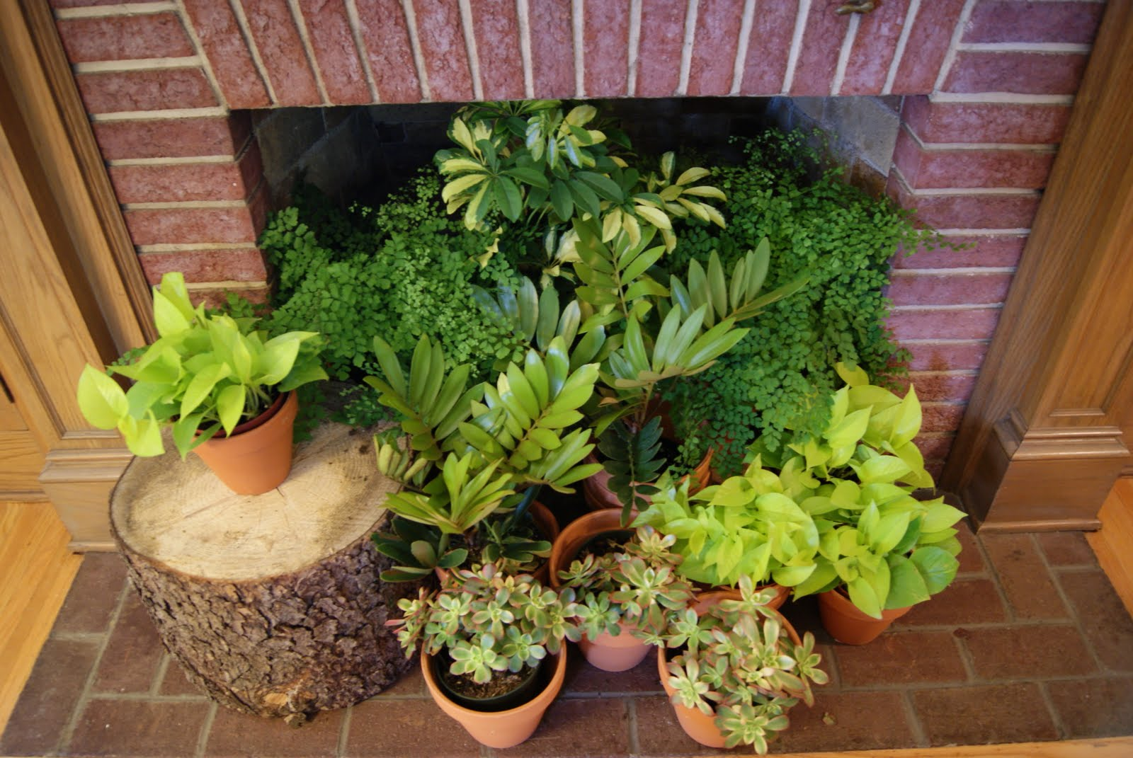 Summer decorating ideas for your fireplace the blog at - Indoor plant decor ideas ...