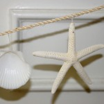 How to Make a Seashell Garland