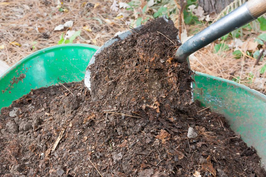 Add Fireplace Ashes to Your Compost Pile