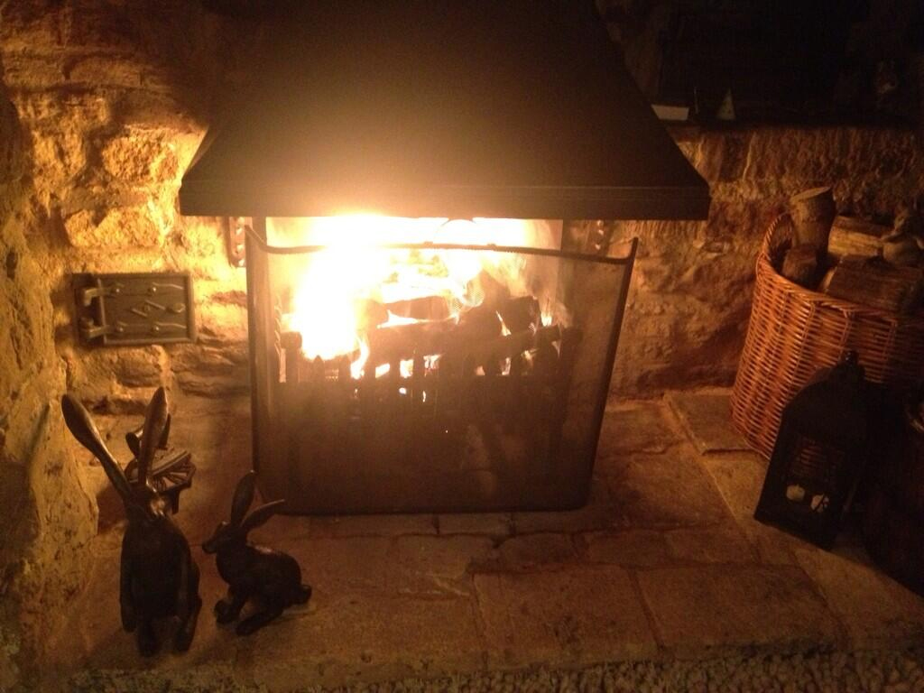 Even the Hearth Hares Enjoy the First  Fire of the Season