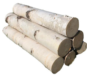 decorate with real birch logs
