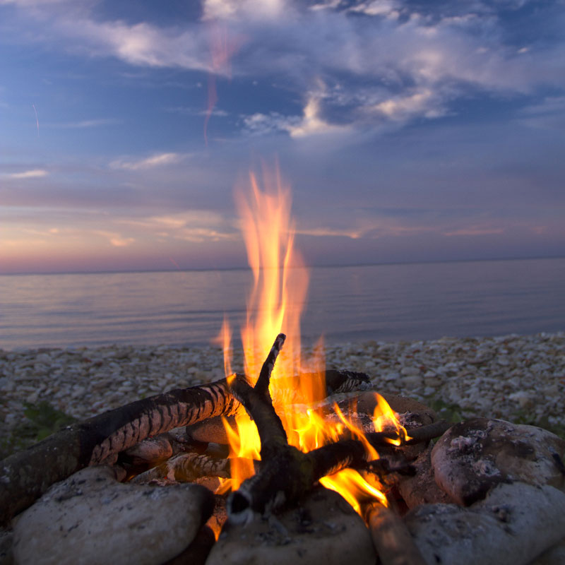 What to Burn for Mosquito Free Fire Pit